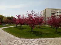 south_campus_1_spring_14