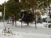 south_campus_1_winter_2018_road_impression_2