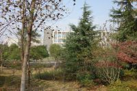 south_campus_2_autumn_library_03