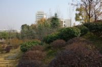 south_campus_2_buildings_35_and_36_autumn