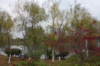 south_campus_2_east_lake_autumn_2017_1