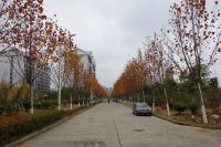 south_campus_2_impression_road_autumn_2017_3