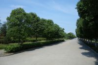 south_campus_2_impression_road_summer_2017_03