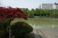 south_campus_2_lake_near_sports_building_spring_2020_01