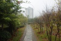 south_campus_2_rainy_day_winter_2020_path_1