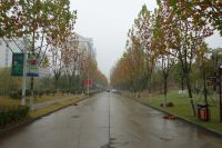 south_campus_2_rainy_day_winter_2020_road_1