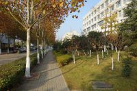 south_campus_2_road_winter_2020_1