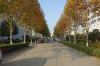 south_campus_2_road_winter_2020_2