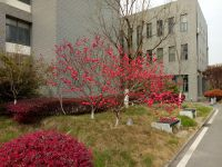 south_campus_2_spring_2020_flowers_11