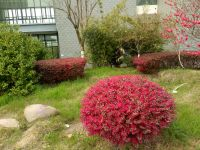 south_campus_2_spring_2020_flowers_15