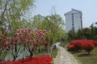 south_campus_2_spring_2020_greenery_07