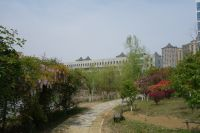 south_campus_2_spring_2020_greenery_11