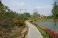 south_campus_2_spring_2020_greenery_20