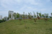south_campus_2_spring_2020_greenery_29