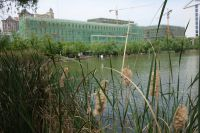 south_campus_2_spring_2020_lake_13