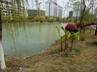 south_campus_2_spring_2020_lake_2