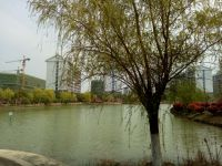 south_campus_2_spring_2020_lake_3
