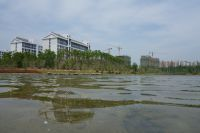 south_campus_2_spring_2020_lake_7