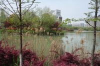 south_campus_2_spring_2020_northeast_lake_08