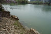 south_campus_2_spring_2020_northeast_lake_11