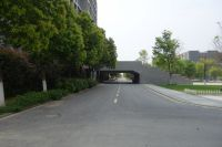 south_campus_2_spring_2020_road_1