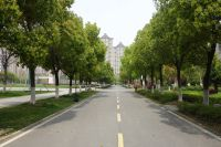 south_campus_2_spring_2020_road_2