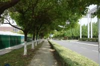 south_campus_2_spring_2020_road_9