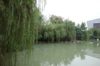 south_campus_2_west_lake_autumn_2