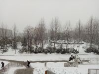 south_campus_2_winter_jan_2018_snow_canteen_view_1