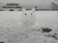 south_campus_2_winter_jan_2018_snow_figure_mouse